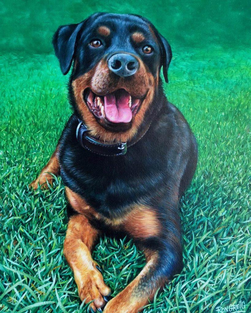 dog portrait, realism dog painting, pet portrait, realist art, rottweiler portrait